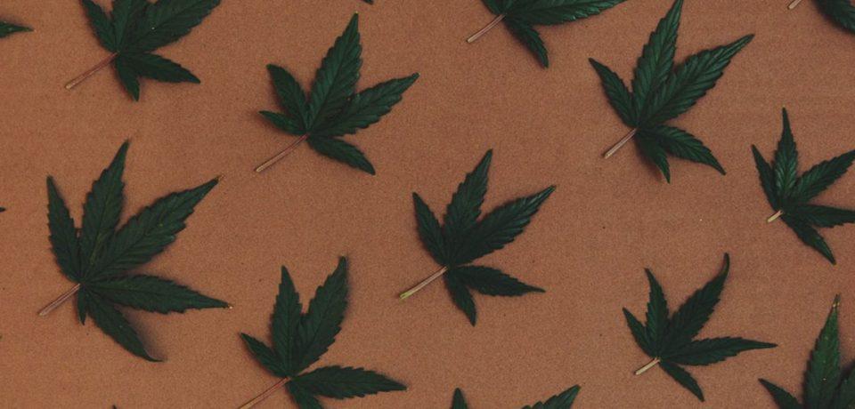Discovering The Home Of Marijuana In Tulsa
